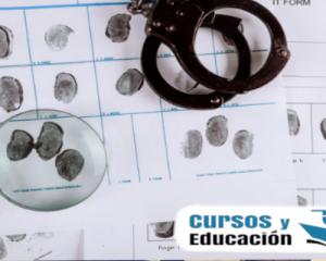 curso en criminología y seguridad